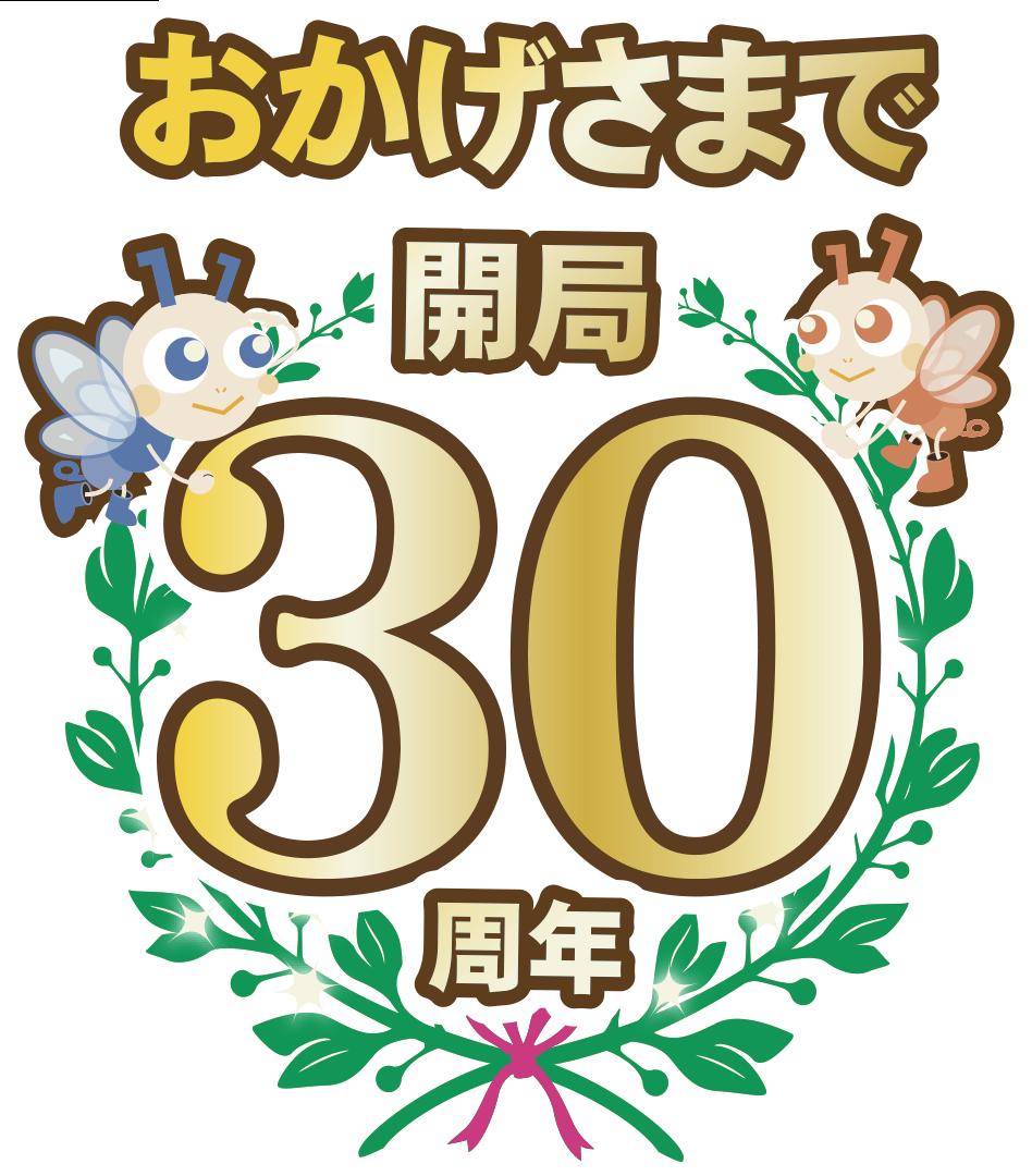 エヌ・シィ・ティ30周年