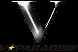 V☆パラダイス